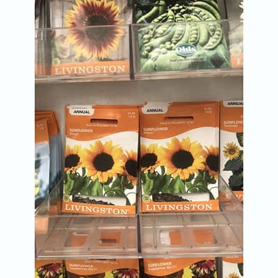 Shop Pocatello The Pocatello Greenhouse Livingston seeds