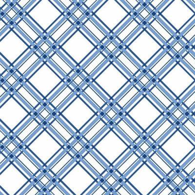 Kimberbell Basics Diagonal Plaid at Sew in Stitches